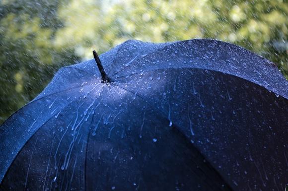 Как выбрать мужской зонт 5 полезных советов – Материал купола зонта