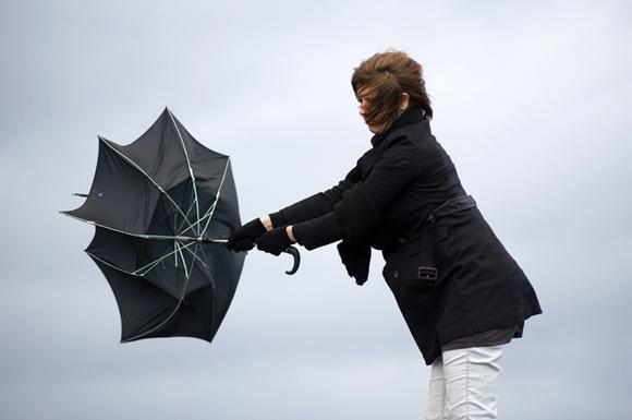 Как выбрать мужской зонт 5 полезных советов – Выгнутый зонт