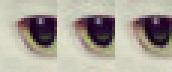 Google Guetzli позволит уменьшить размеры JPEG-файлов на треть (3 фото)