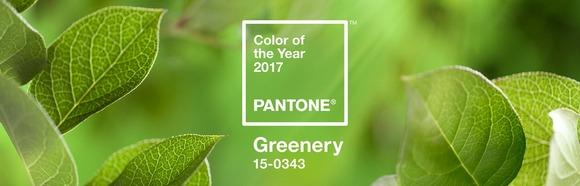 Greenery-цвет 2017 года