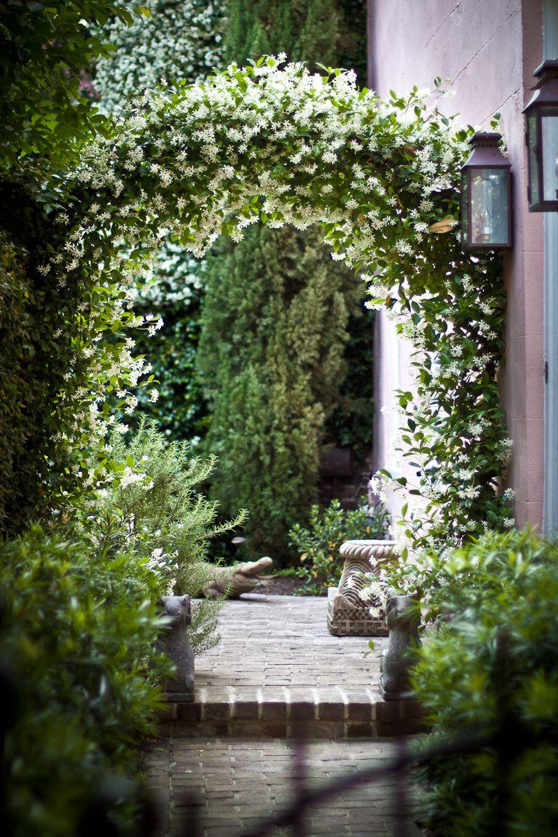 Арка в саду-фото 1