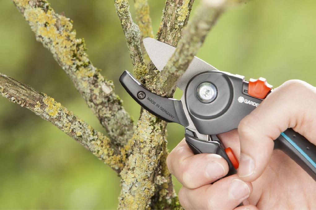 Обрезка деревьев-инвентарь