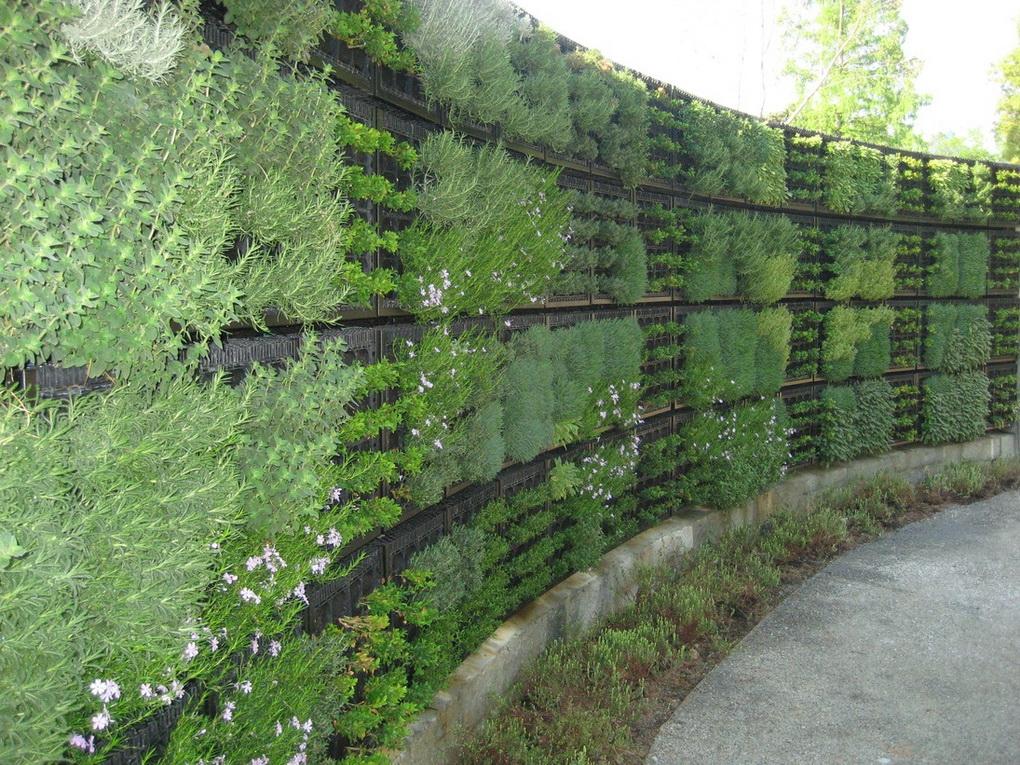 Вертикальное озеленение-варианты для маленького сада фото 7