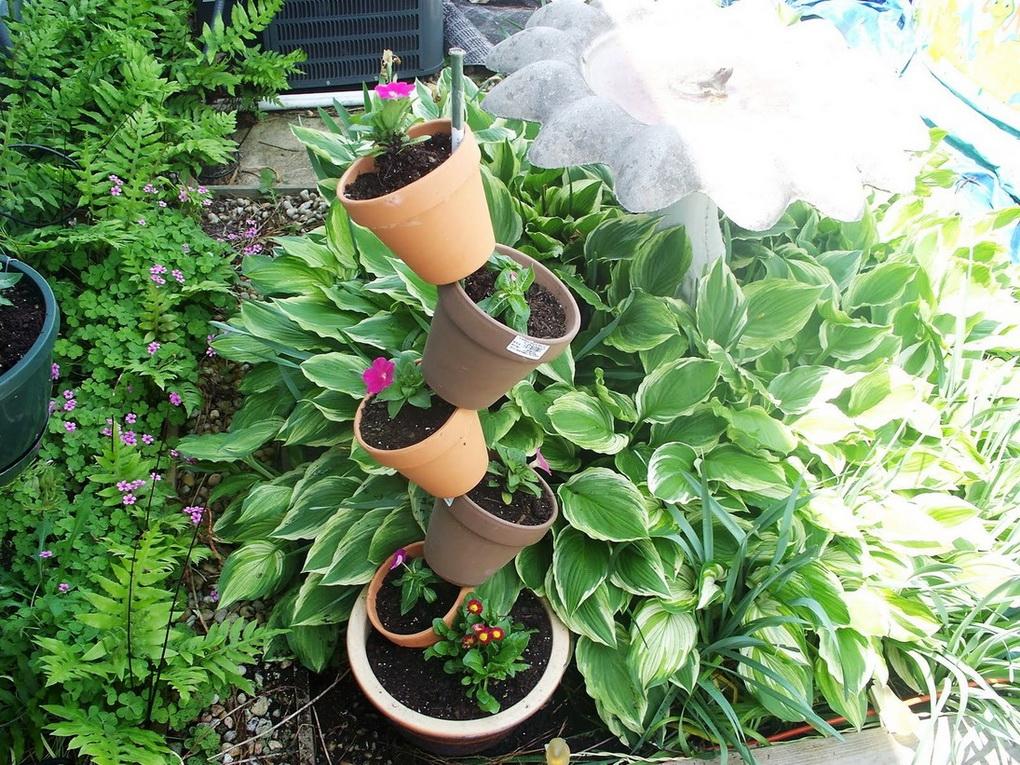Вертикальное озеленение-варианты для маленького сада фото 9