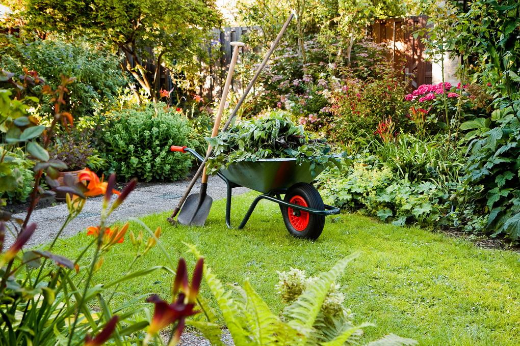 Уход за садом-фото