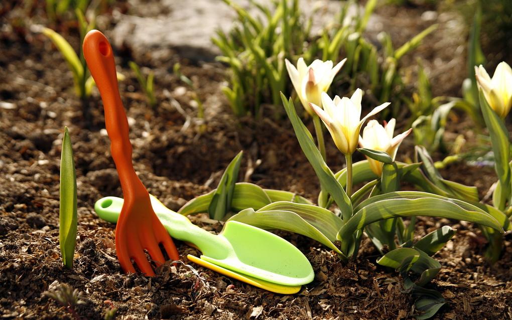 Уход за цветником-инвентарь