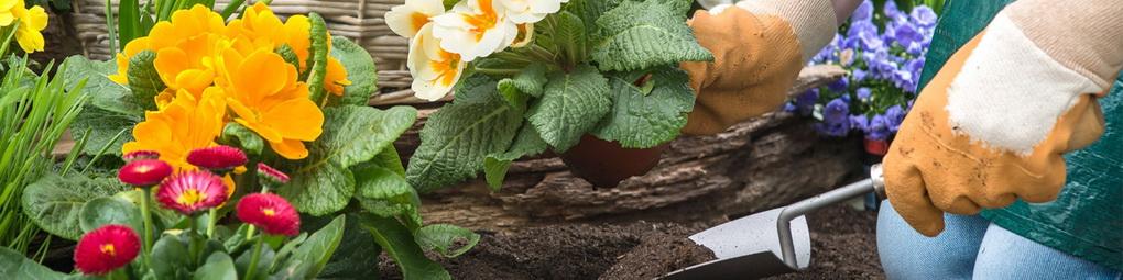 Цветник-работы в саду