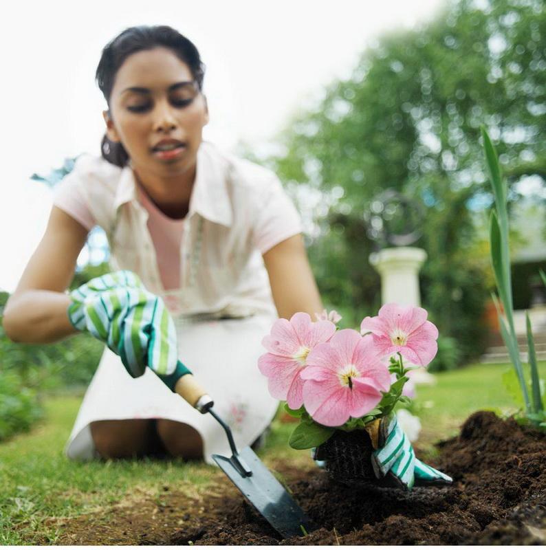 Советы садоводам-фото
