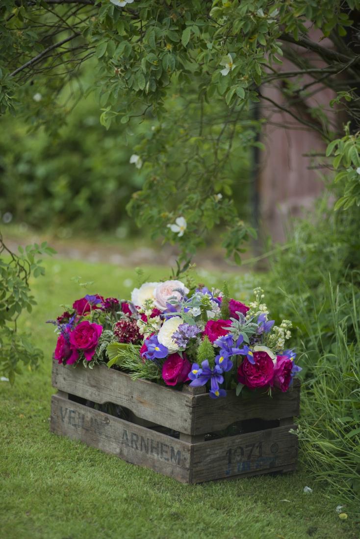 Цветы в ящике-фото