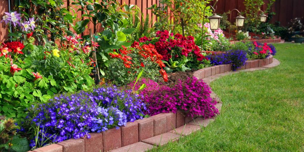 Design-perfect garden flowers
