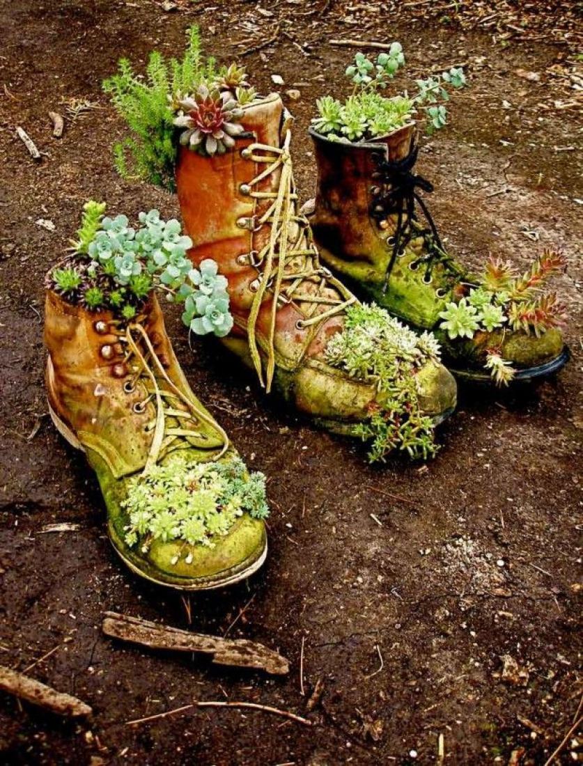 Ботинки-клумба
