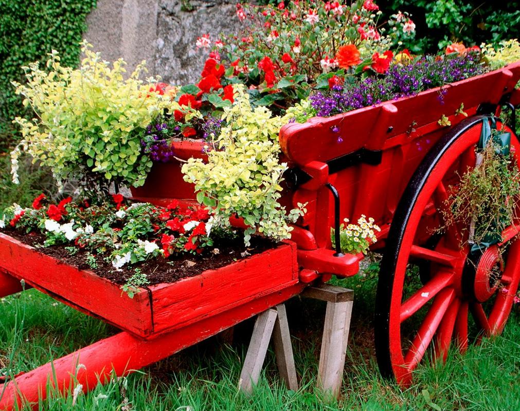 Цветы в телеге-как посадить цветы