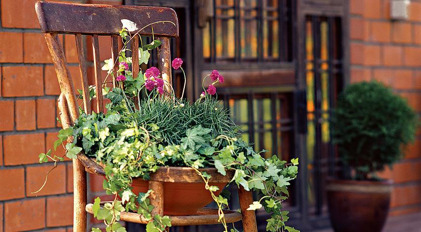 Венский стул-цветник