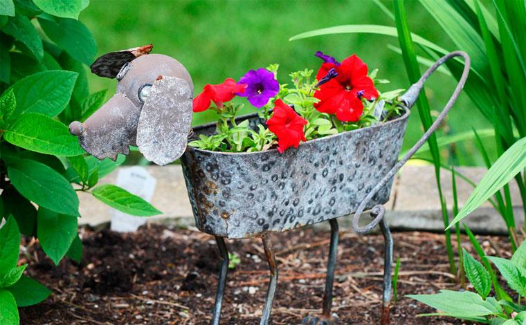 Высадка цветов-оригинальные идеи