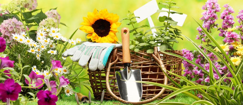 Работы в саду и на огороде-инвентарь