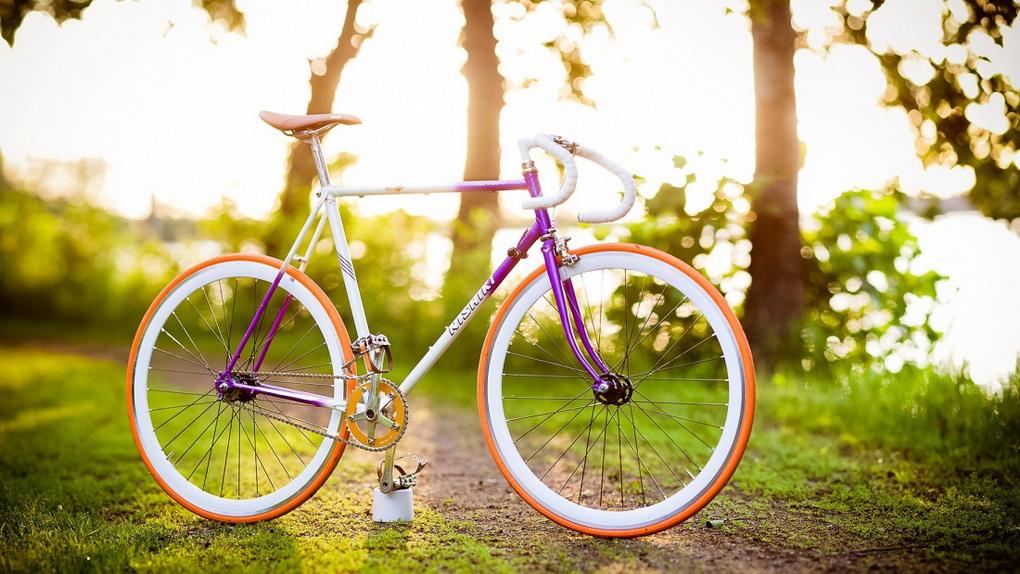 Велопрогулки-для здоровья