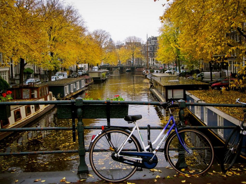 Велосипед-и осенние виды