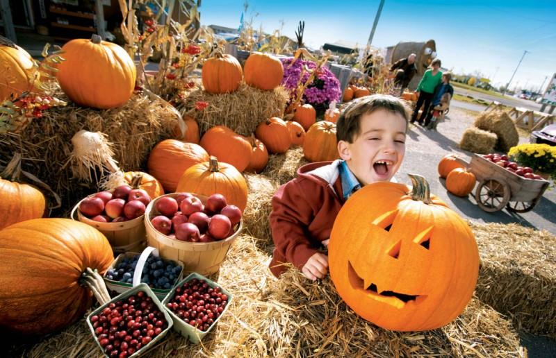 Фотосессия для детей-Хэллоуин