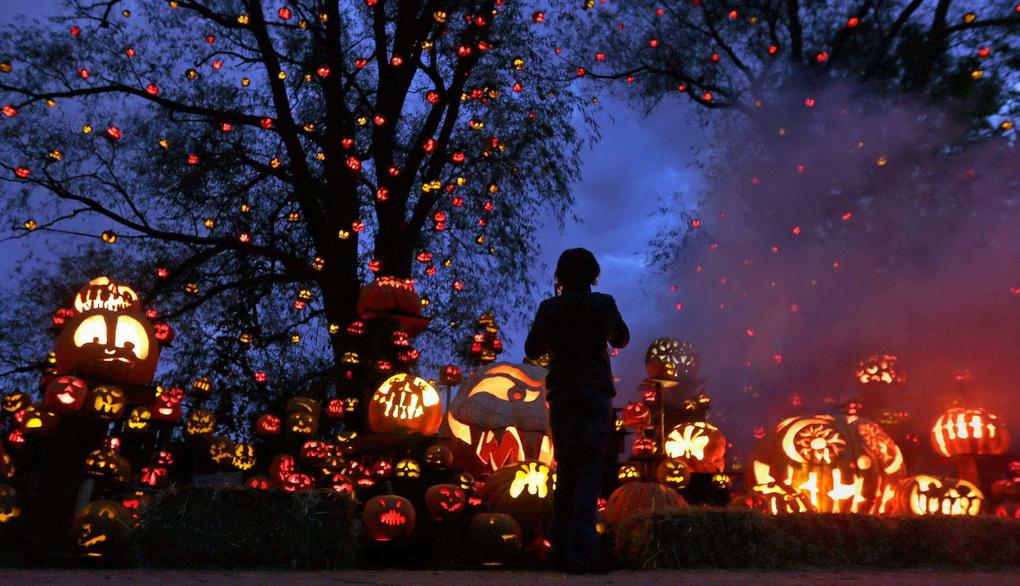 Хэллоуин-много тыкв