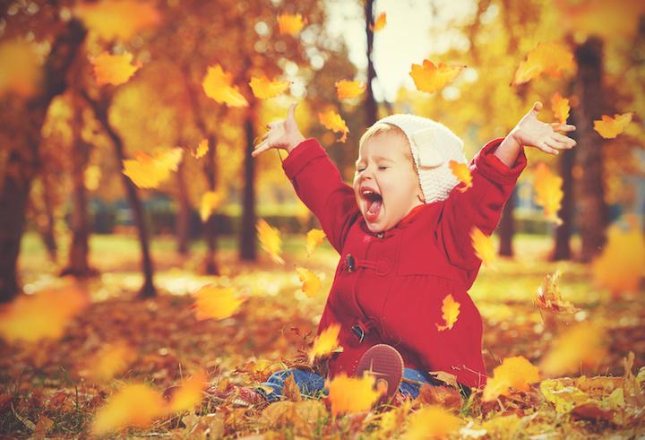 Счастье как тренд или Что такое жизнь в стиле хюгге – Осенняя прогулка
