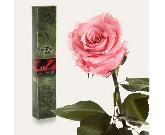 Лучшие идеи подарков для любимых в День Святого Валентина – долгосвежие розы