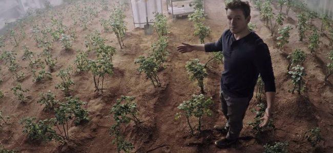 "Peruvian scientists grew potatoes in ""Mesopotamia"" conditions"