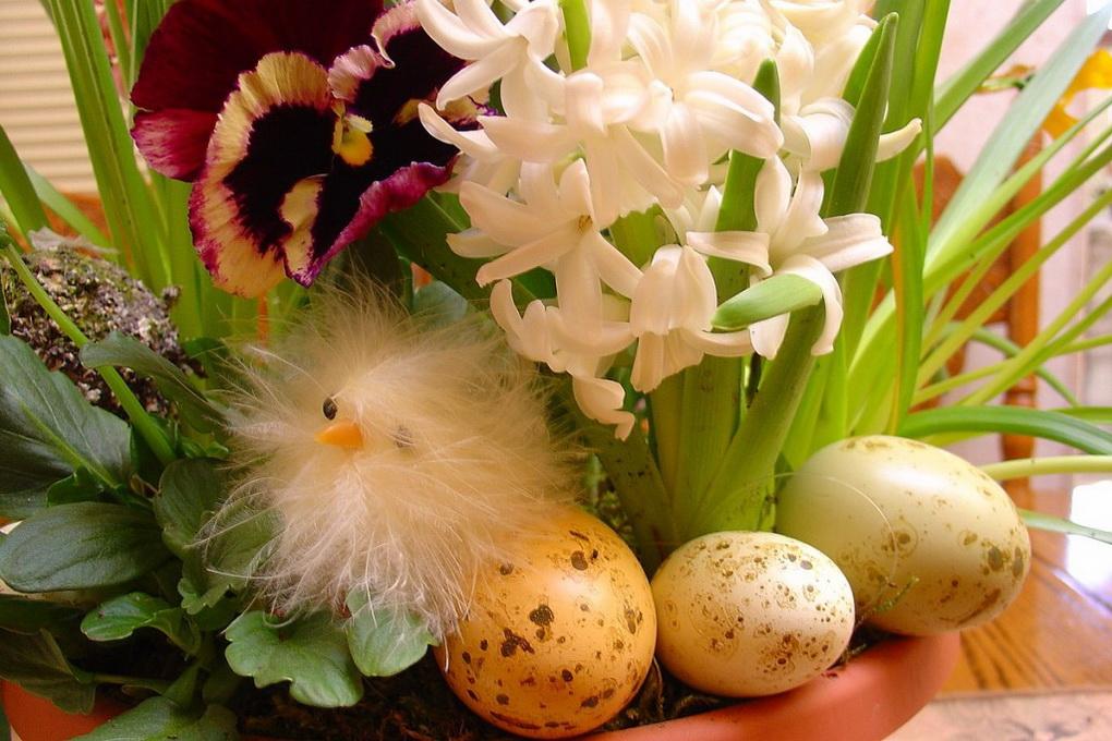 Весенний декор к Пасхе-живые цветы и пасхальные яйца