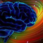 8178 Neuralink Elon Musk. Part two: the brain