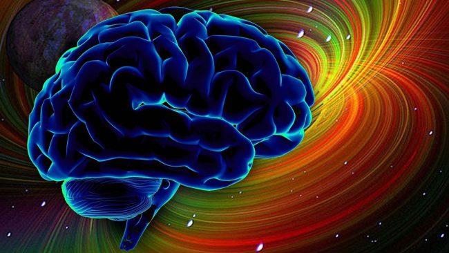 Neuralink Elon Musk. Part two: the brain