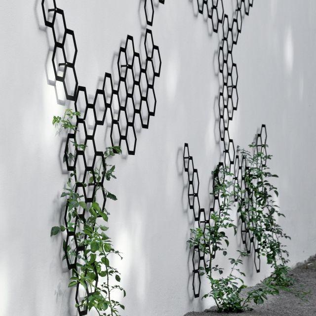 Металлическая решетка для вертикального озеленения-идеи