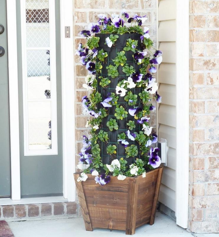 Вертикальное озеленение-варианты для маленького сада фото 10