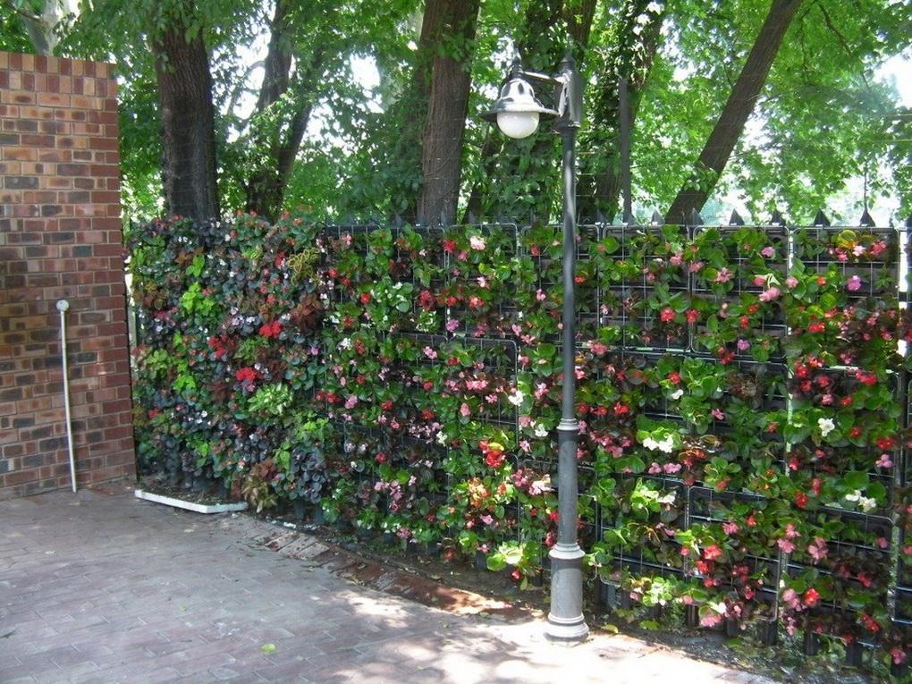 Вертикальное озеленение-варианты для маленького сада фото 6