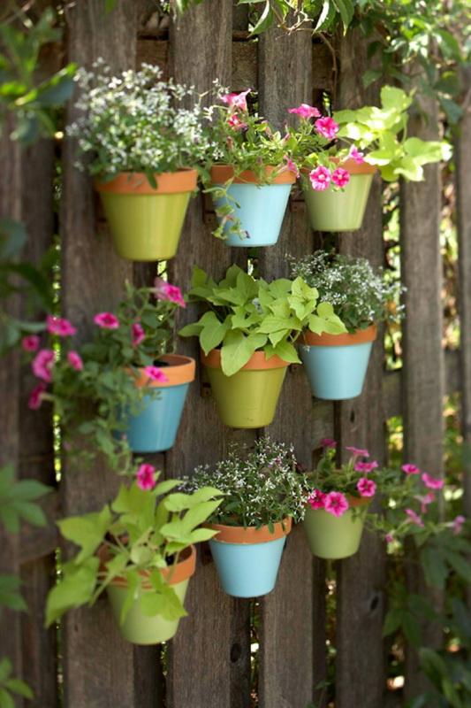 Вертикальное озеленение-варианты для маленького сада фото 3
