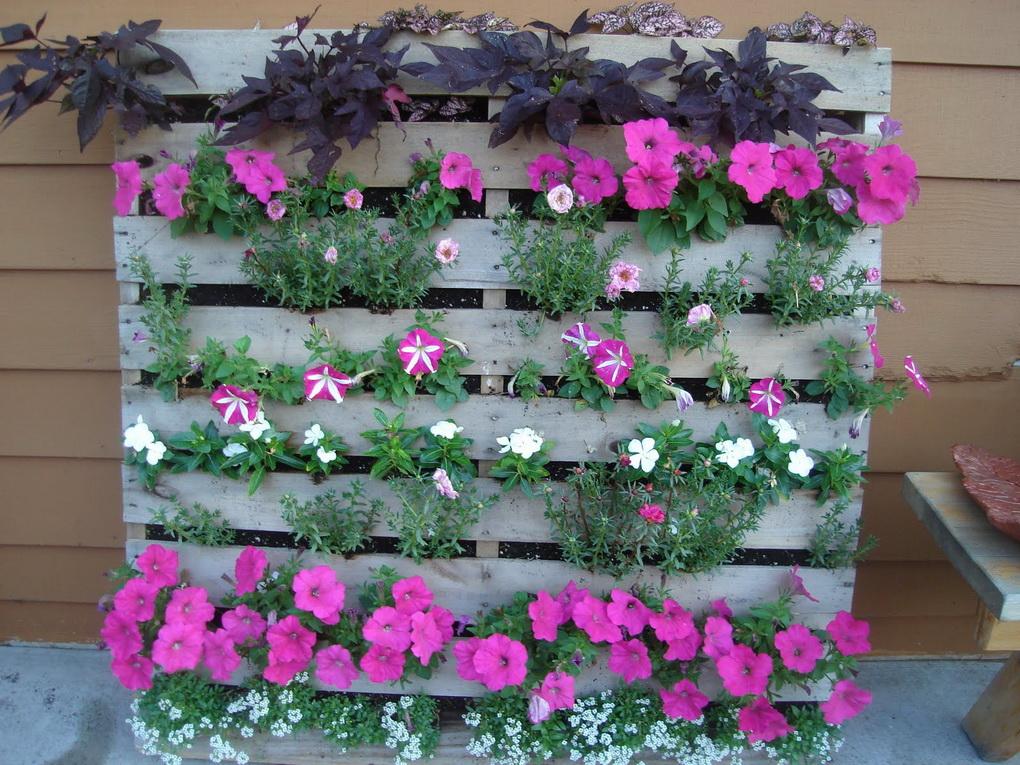 Озеленение территории-цветники
