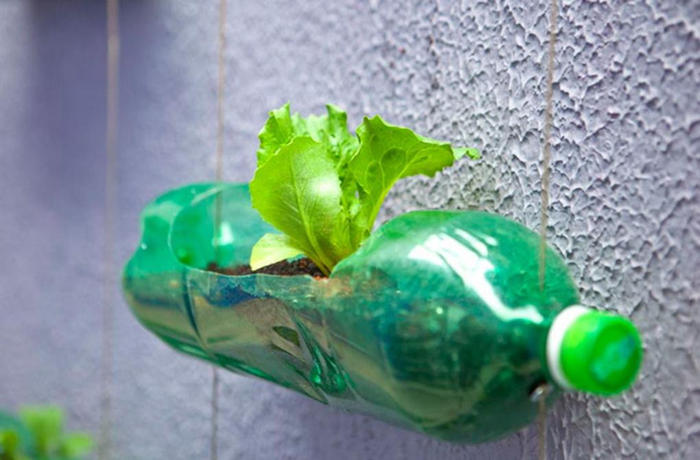 Пластиковые бутылки в декоре сада-фото