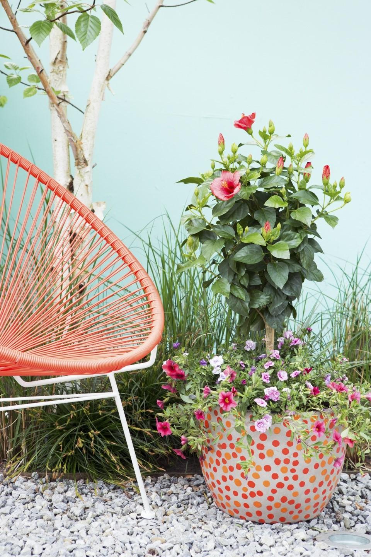 Растения и декор в саду-фото