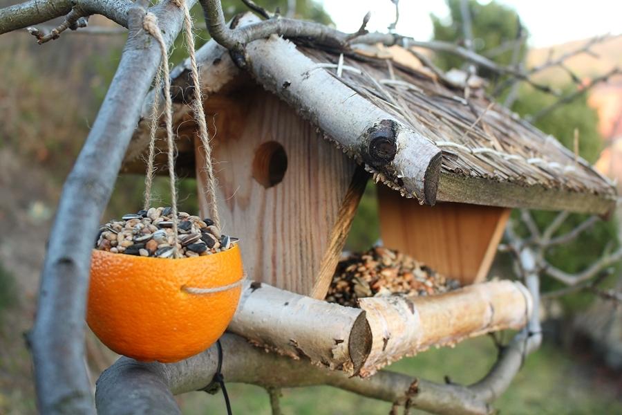 Кормушки для птиц в саду-вариант 7
