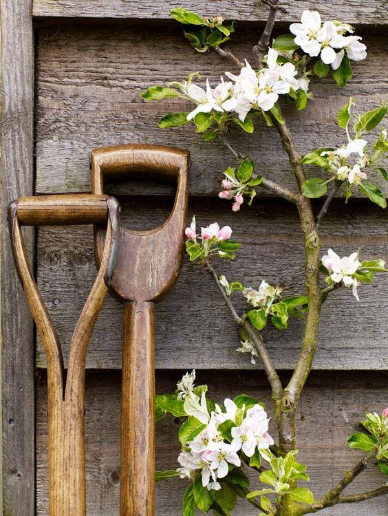 Работа в саду и на огороде-необходимый инвентарь