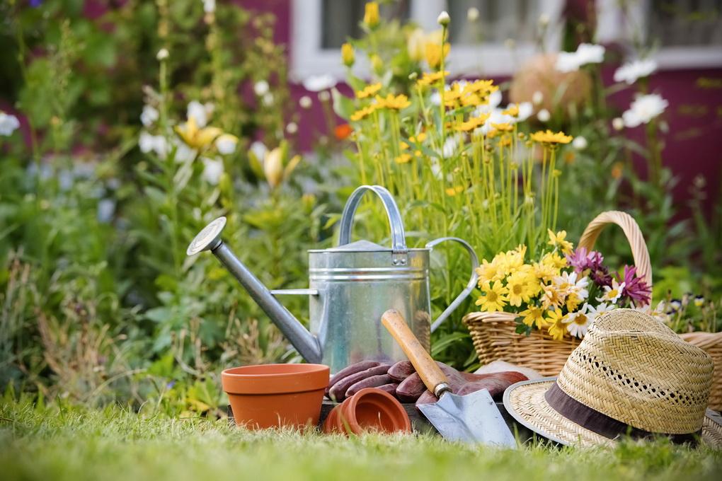 Уход за садом-что нужно