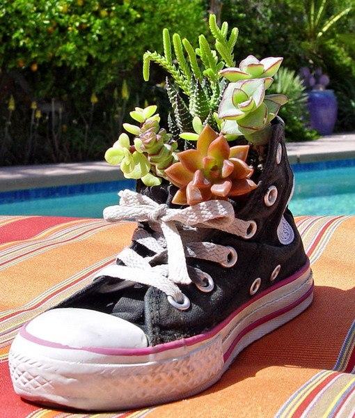Суккуленты в ботинке-идеи