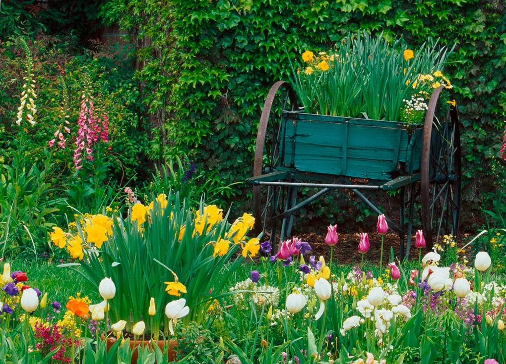 Ландшафтный дизайн-как посадить цветы