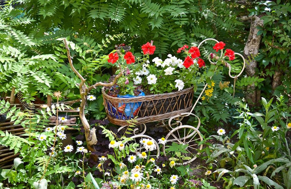 Идеи озеленения сада-фото
