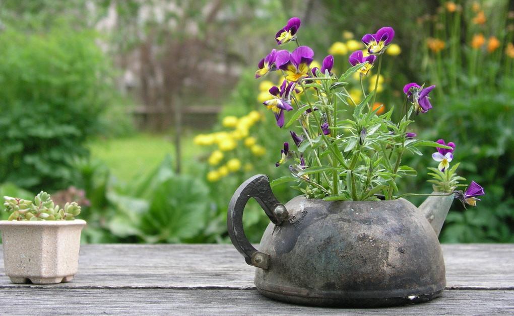 Клумба в старом чайнике-идея