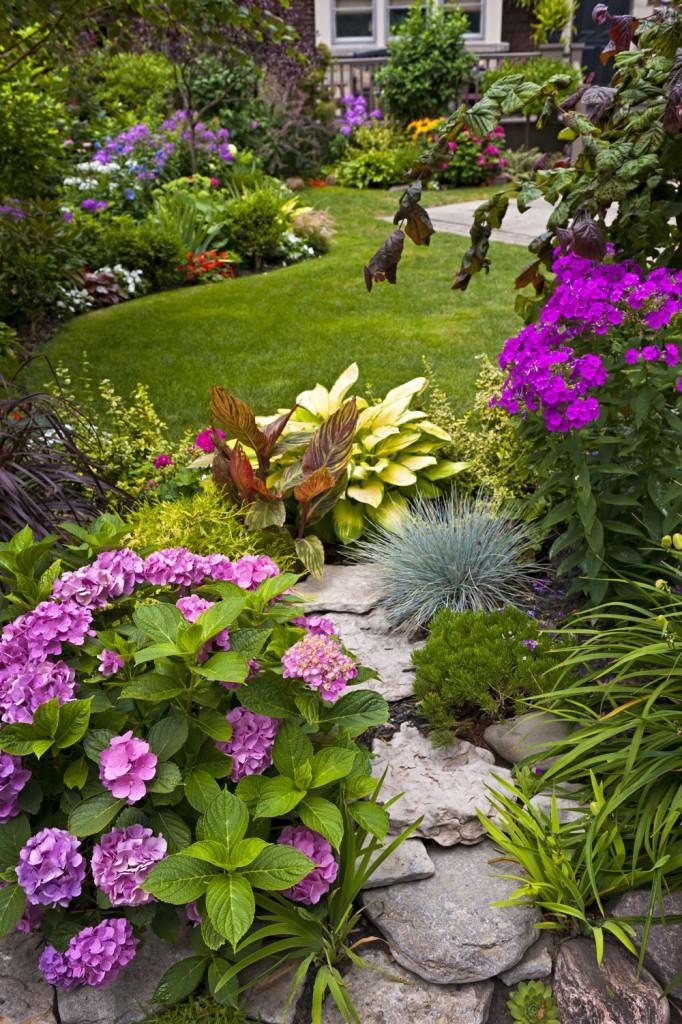 Цветущий сад-как ухаживать