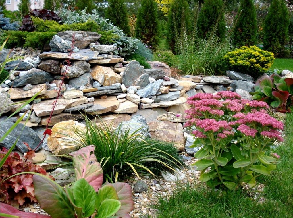 Альпийская горка с растениями-ваш сад фото