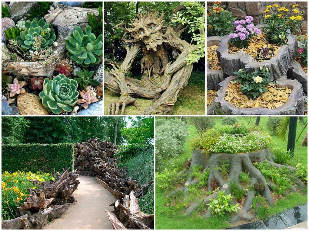 Рутарий-сад корней коллаж