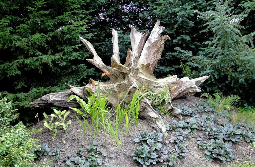Коряжная горка-в саду
