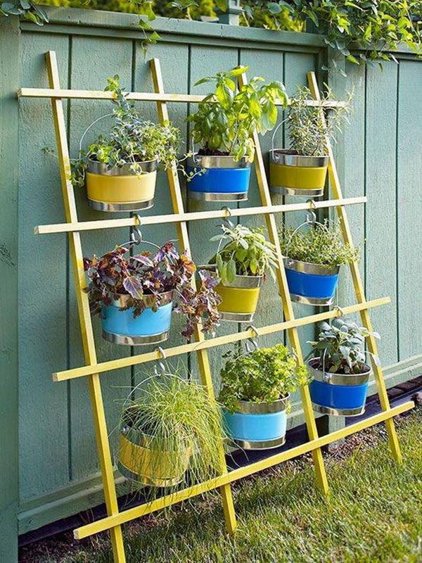 Вертикальное озеленение-варианты для маленького сада фото 5