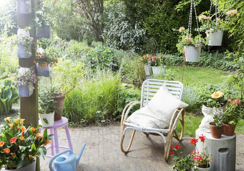 Уютный сад-фото 3