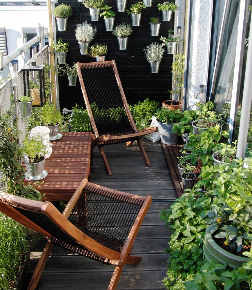 Растения на балконе-фото